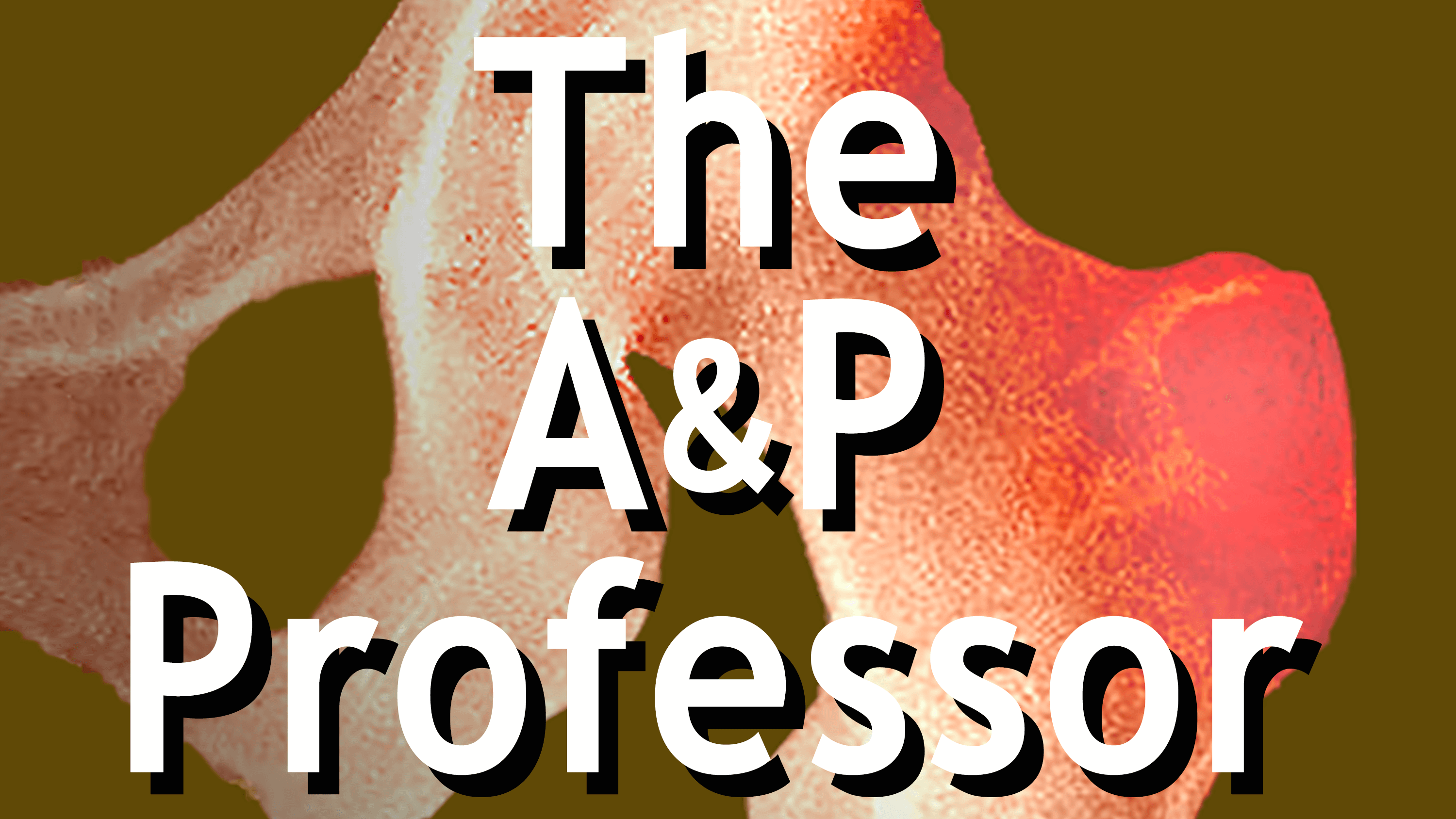 Podcast List | The A&P Professor Radio Hosted by Kevin Patton