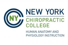 NYCC Human Anatomy and Physiology Instruction