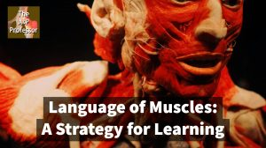 language of muscles