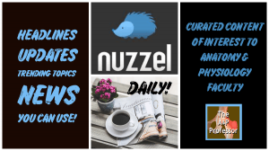 Nuzzel newsletter