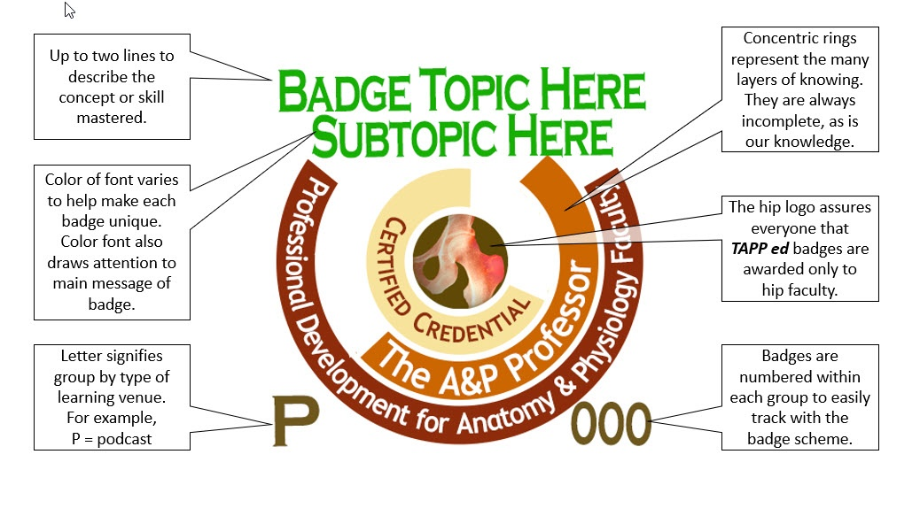 diagram showing the meaning of all the parts of a TAPP ed badge