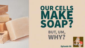 image of bars of soap with caption: our cells make soap? but, um, why?